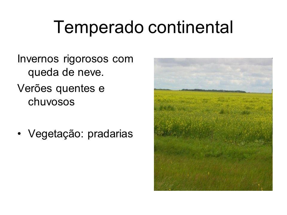 Temperado continental Invernos rigorosos com queda de neve. Verões quentes e chuvosos Vegetação: pradarias