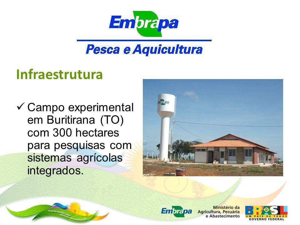 Infraestrutura Campo experimental em Buritirana (TO) com 300 hectares para pesquisas com sistemas agrícolas integrados.