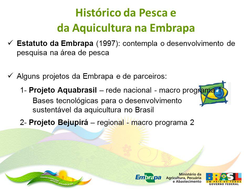 Estatuto da Embrapa (1997): contempla o desenvolvimento de pesquisa na área de pesca Alguns projetos da Embrapa e de parceiros: 1- Projeto Aquabrasil – rede nacional - macro programa 1 Bases tecnológicas para o desenvolvimento sustentável da aquicultura no Brasil 2- Projeto Bejupirá – regional - macro programa 2 Histórico da Pesca e da Aquicultura na Embrapa