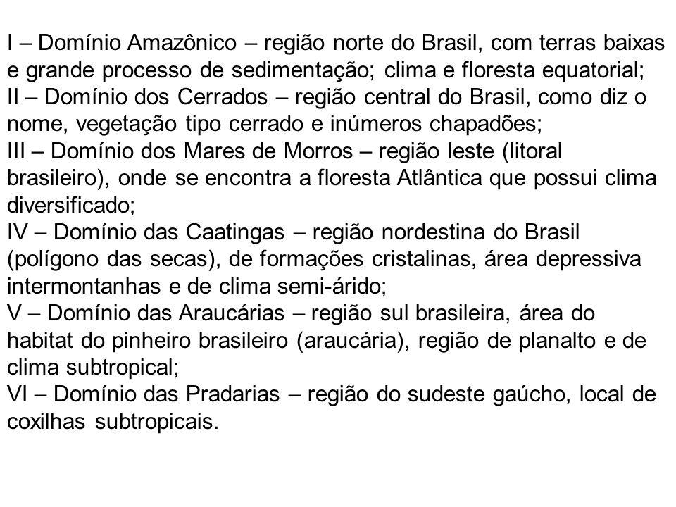 I – Domínio Amazônico – região norte do Brasil, com terras baixas e grande processo de sedimentação; clima e floresta equatorial; II – Domínio dos Cerrados – região central do Brasil, como diz o nome, vegetação tipo cerrado e inúmeros chapadões; III – Domínio dos Mares de Morros – região leste (litoral brasileiro), onde se encontra a floresta Atlântica que possui clima diversificado; IV – Domínio das Caatingas – região nordestina do Brasil (polígono das secas), de formações cristalinas, área depressiva intermontanhas e de clima semi-árido; V – Domínio das Araucárias – região sul brasileira, área do habitat do pinheiro brasileiro (araucária), região de planalto e de clima subtropical; VI – Domínio das Pradarias – região do sudeste gaúcho, local de coxilhas subtropicais.