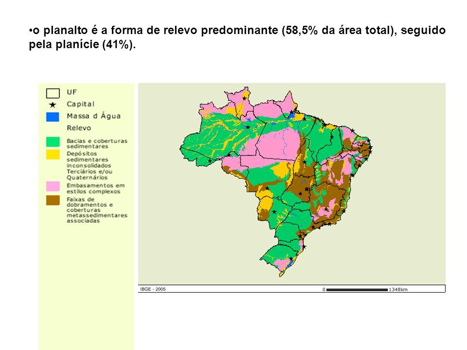 o planalto é a forma de relevo predominante (58,5% da área total), seguido pela planície (41%).