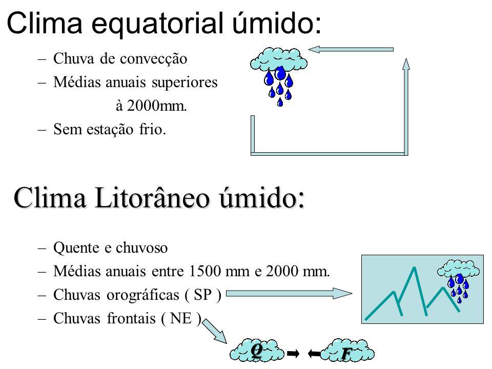Clima equatorial úmido: –Chuva de convecção –Médias anuais superiores à 2000mm. –Sem estação frio. –Quente e chuvoso –Médias anuais entre 1500 mm e 20