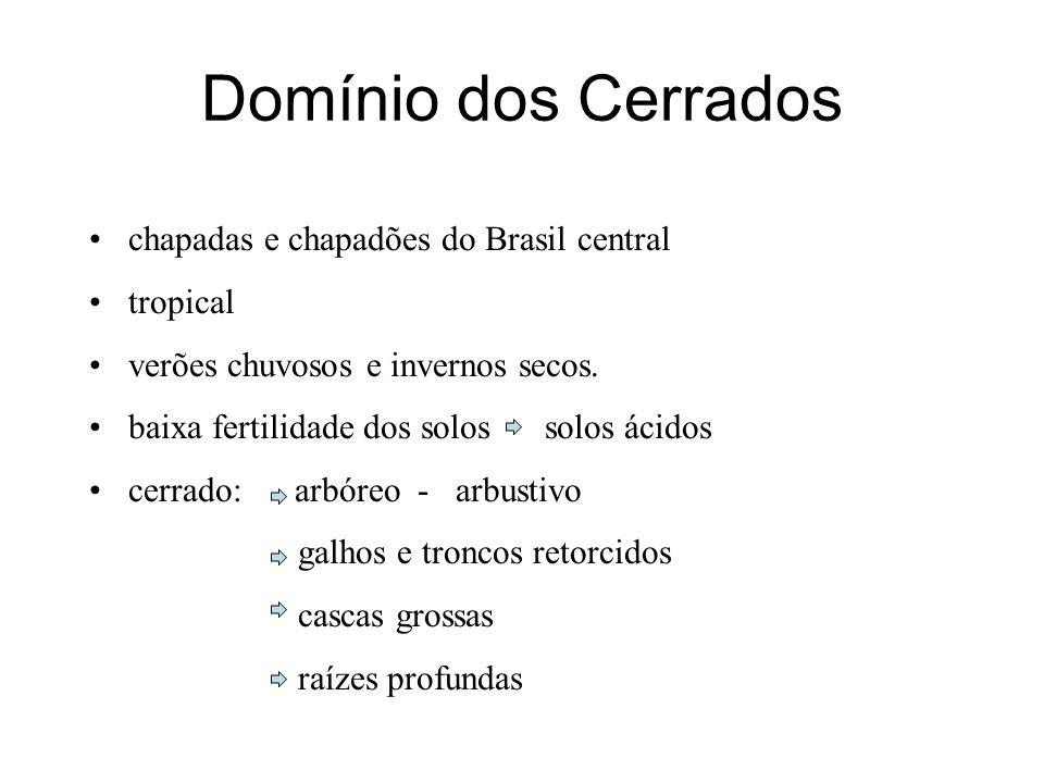 Domínio dos Cerrados chapadas e chapadões do Brasil central tropical verões chuvosos e invernos secos. baixa fertilidade dos solos solos ácidos cerrad