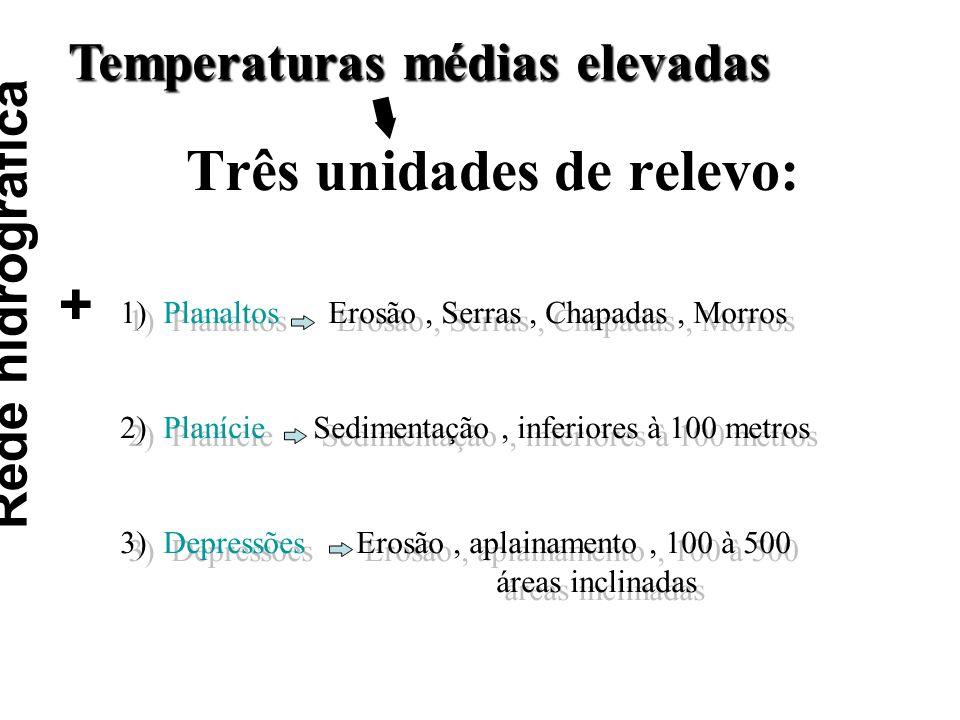 Rede hidrográfica + Três unidades de relevo: Temperaturas médias elevadas 1) Planaltos Erosão, Serras, Chapadas, Morros 2) Planície Sedimentação, infe
