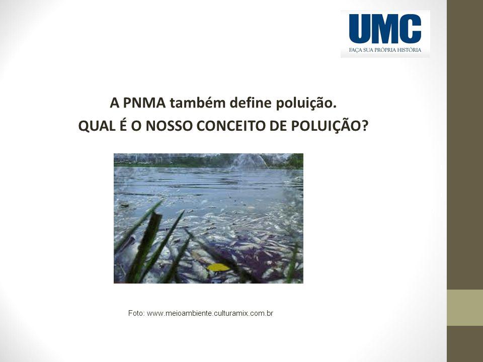 A PNMA também define poluição. QUAL É O NOSSO CONCEITO DE POLUIÇÃO? Foto: www.meioambiente.culturamix.com.br