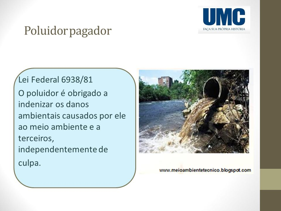 Poluidor pagador Lei Federal 6938/81 O poluidor é obrigado a indenizar os danos ambientais causados por ele ao meio ambiente e a terceiros, independen