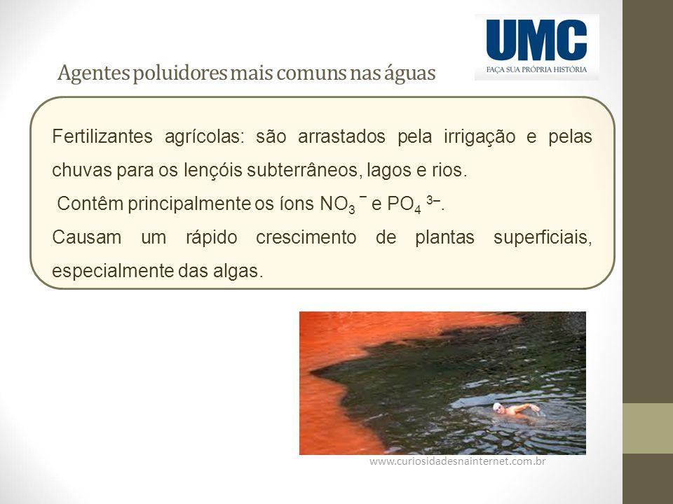 Agentes poluidores mais comuns nas águas www.curiosidadesnainternet.com.br Fertilizantes agrícolas: são arrastados pela irrigação e pelas chuvas para