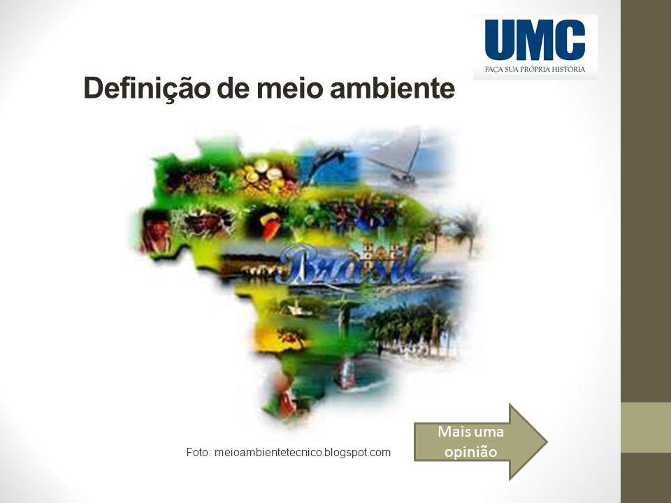 Definição de meio ambiente Foto: meioambientetecnico.blogspot.com Mais uma opinião