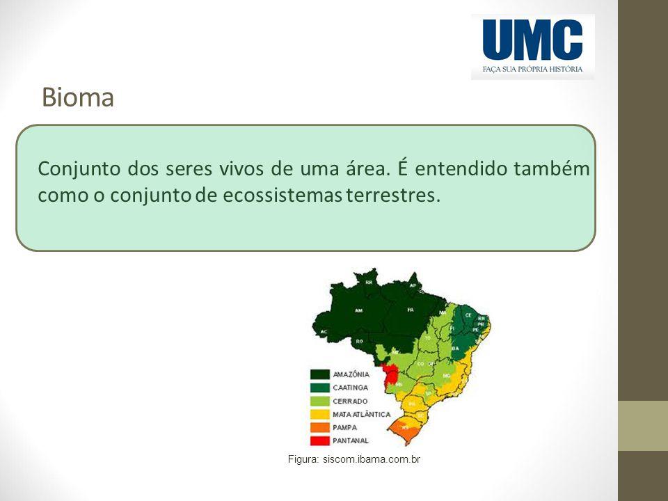 Bioma Conjunto dos seres vivos de uma área. É entendido também como o conjunto de ecossistemas terrestres. Figura: siscom.ibama.com.br