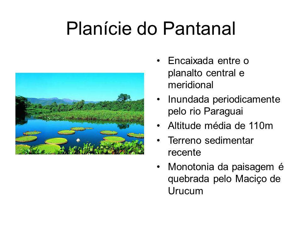 Planície do Pantanal Encaixada entre o planalto central e meridional Inundada periodicamente pelo rio Paraguai Altitude média de 110m Terreno sedimentar recente Monotonia da paisagem é quebrada pelo Maciço de Urucum