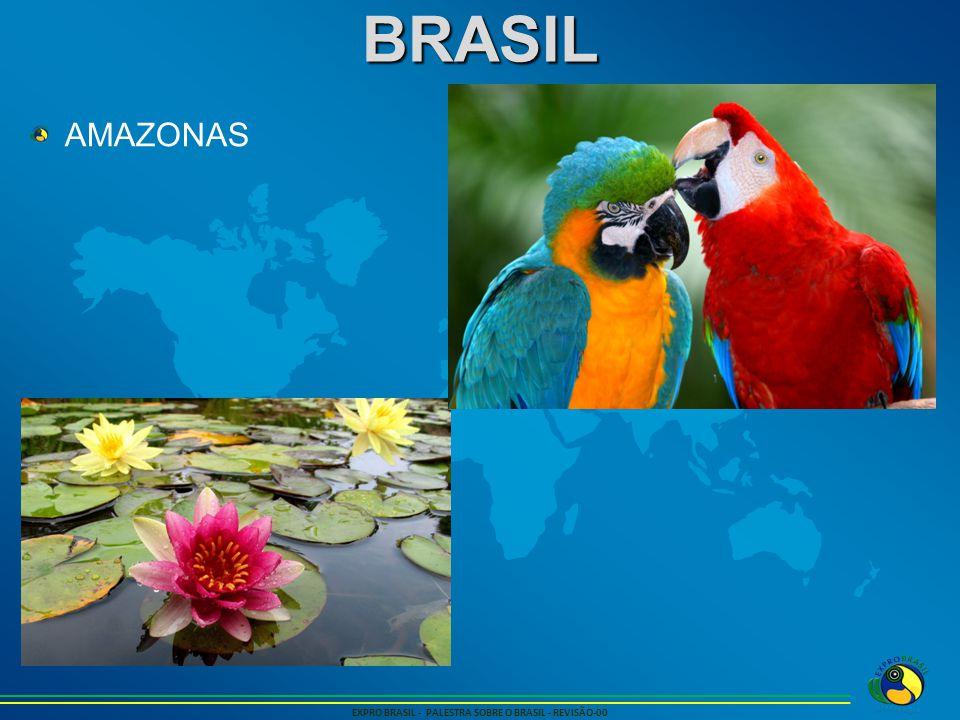 BRASIL EXPRO BRASIL - PALESTRA SOBRE O BRASIL - REVISÃO-00 AMAZONAS