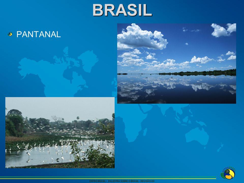 BRASIL EXPRO BRASIL - PALESTRA SOBRE O BRASIL - REVISÃO-00 PANTANAL