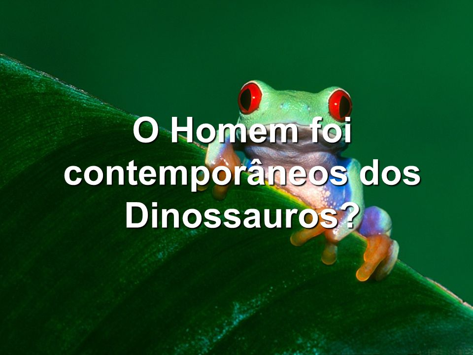O Homem foi contemporâneos dos Dinossauros?