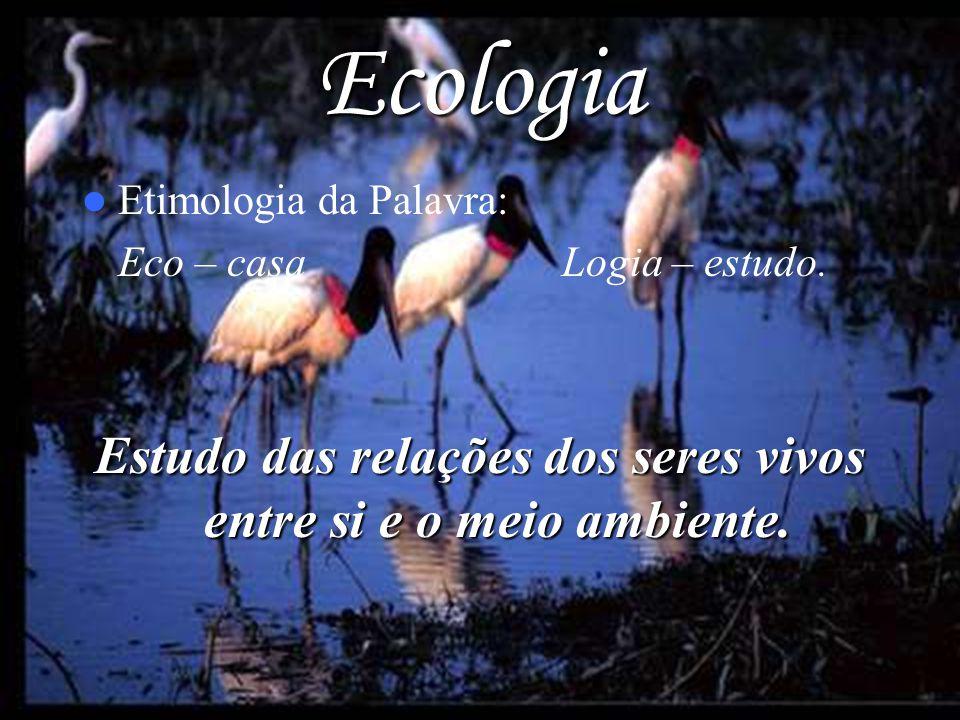 Ecologia Etimologia da Palavra: Eco – casa Logia – estudo. Estudo das relações dos seres vivos entre si e o meio ambiente.