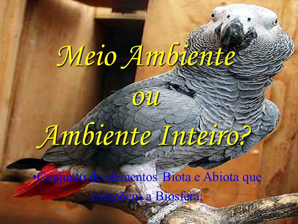 Meio Ambiente ou Ambiente Inteiro Conjunto de elementos Biota e Abiota que compõem a Biosfera;