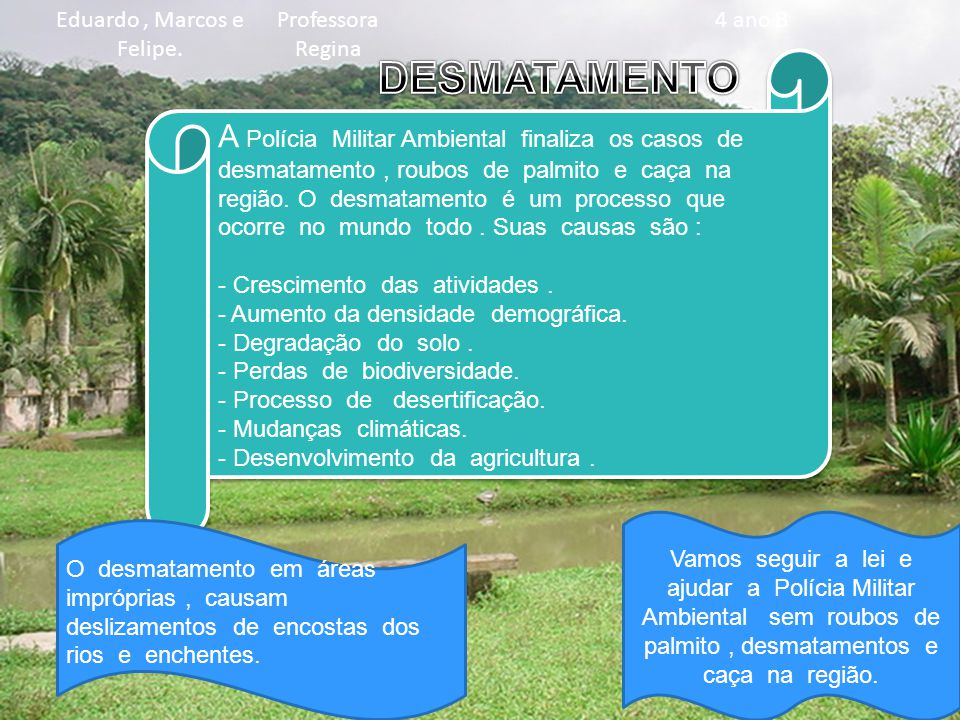 A Polícia Militar Ambiental finaliza os casos de desmatamento, roubos de palmito e caça na região.