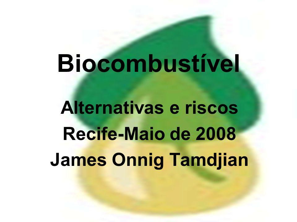 Biocombustível Alternativas e riscos Recife-Maio de 2008 James Onnig Tamdjian