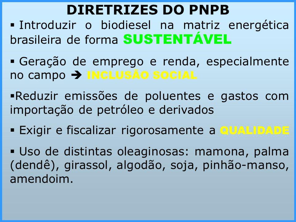  I Introduzir o biodiesel na matriz energética brasileira de forma SUSTENTÁVEL  G Geração de emprego e renda, especialmente no campo  INCLUSÃO SO