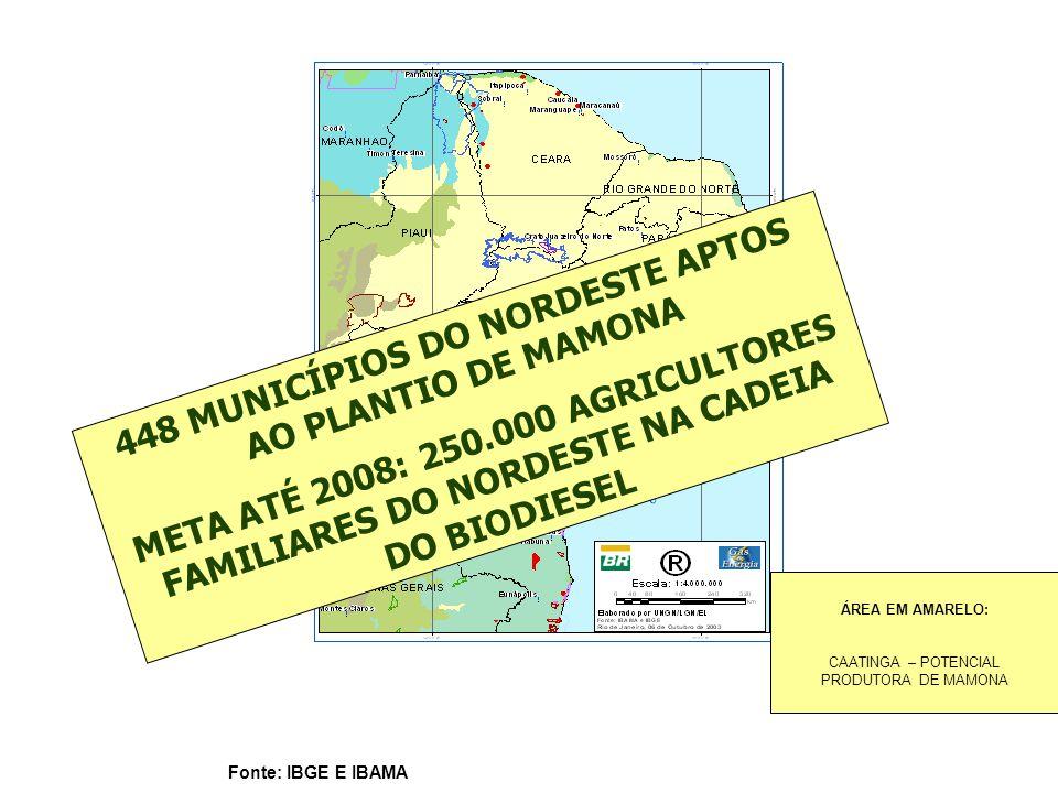 Fonte: IBGE E IBAMA 448 MUNICÍPIOS DO NORDESTE APTOS AO PLANTIO DE MAMONA META ATÉ 2008: 250.000 AGRICULTORES FAMILIARES DO NORDESTE NA CADEIA DO BIOD