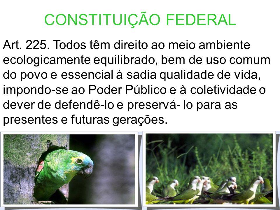 CONSTITUIÇÃO FEDERAL Art. 24. Compete à União, aos Estados e ao Distrito Federal legislar concorrentemente sobre: VI - florestas, caça, pesca, fauna,