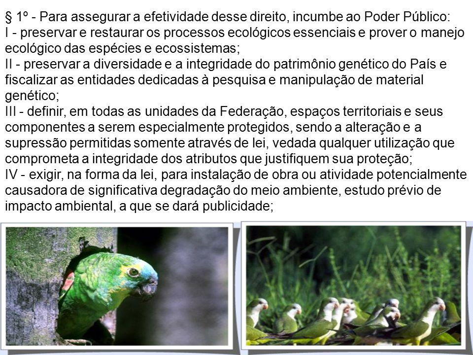 CONSTITUIÇÃO FEDERAL Art. 225. Todos têm direito ao meio ambiente ecologicamente equilibrado, bem de uso comum do povo e essencial à sadia qualidade d