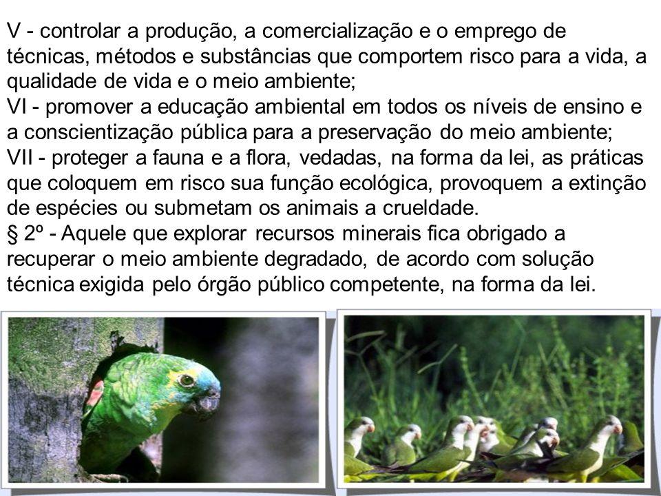 § 1º - Para assegurar a efetividade desse direito, incumbe ao Poder Público: I - preservar e restaurar os processos ecológicos essenciais e prover o m