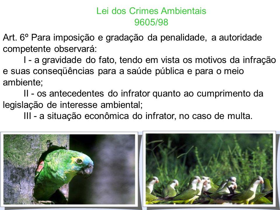 Lei dos Crimes Ambientais 9605/98 - Crimes Formais - Ação Penal Pública incondicionada - Art. 3º As pessoas jurídicas serão responsabilizadas administ