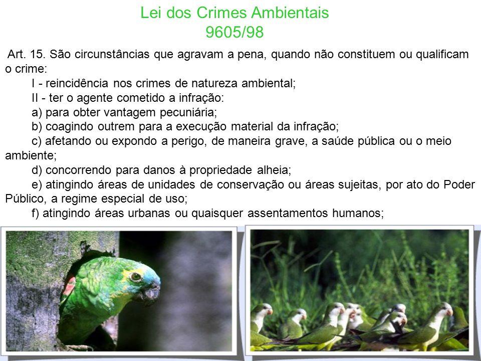 Lei dos Crimes Ambientais 9605/98 Art. 14. São circunstâncias que atenuam a pena: I - baixo grau de instrução ou escolaridade do agente; II - arrepend