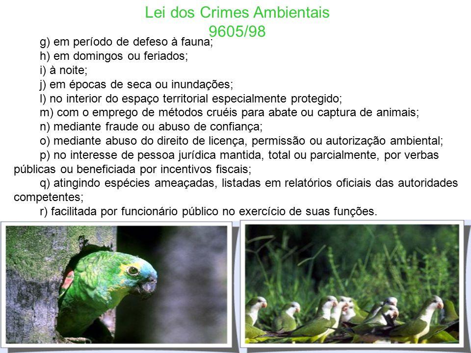 Lei dos Crimes Ambientais 9605/98 Art. 15. São circunstâncias que agravam a pena, quando não constituem ou qualificam o crime: I - reincidência nos cr