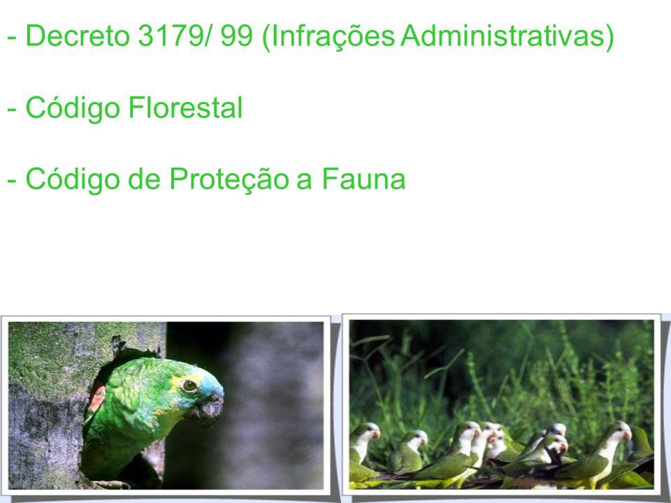 Lei dos Crimes Ambientais 9605/98 g) em período de defeso à fauna; h) em domingos ou feriados; i) à noite; j) em épocas de seca ou inundações; l) no i