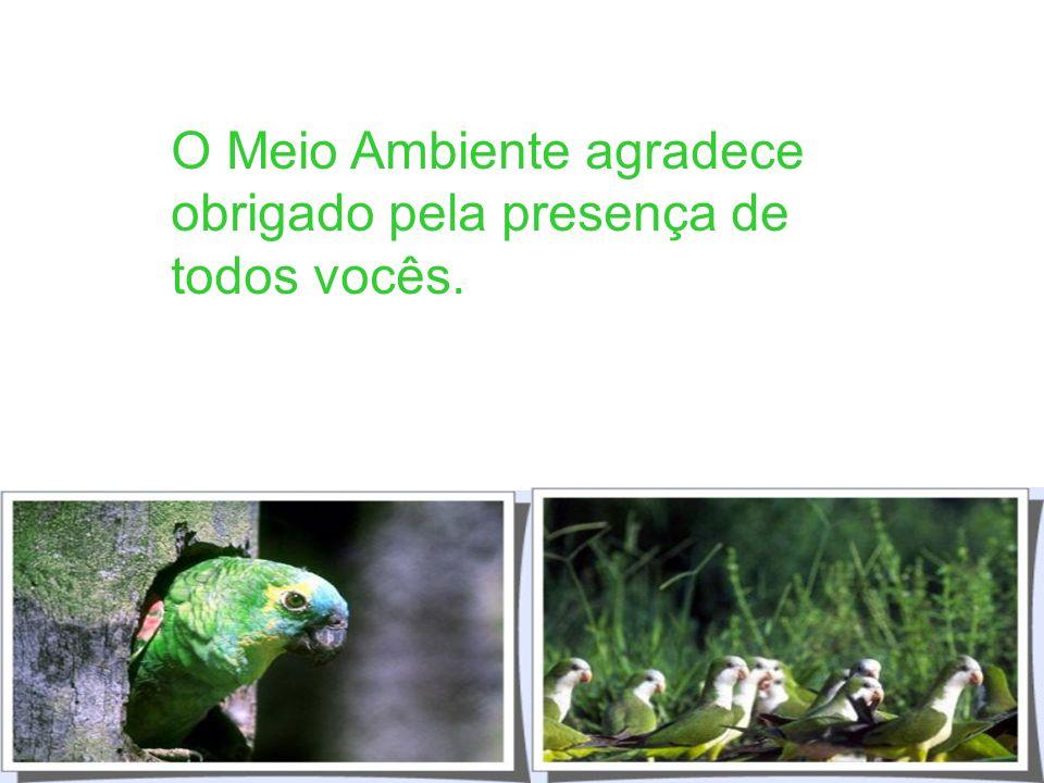 - Decreto 3179/ 99 (Infrações Administrativas) - Código Florestal - Código de Proteção a Fauna