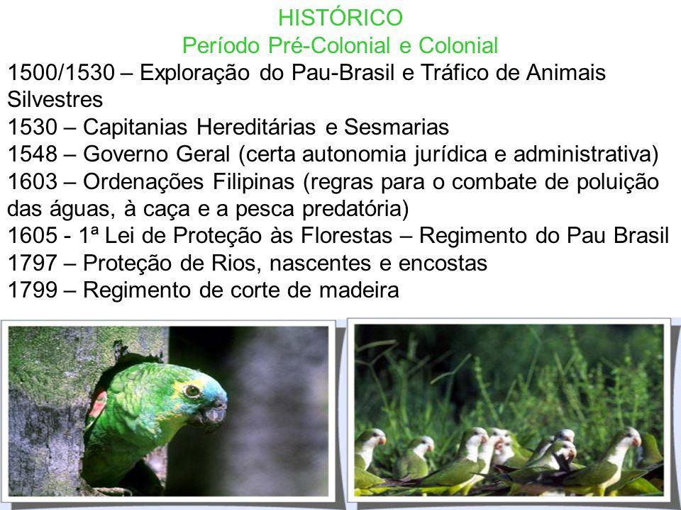 SUMÁRIO HISTÓRICO PRINCÍPIOS AMBIENTAIS CONSTITUIÇÃO FEDERAL LEGISLAÇÃO AMBIENTAL