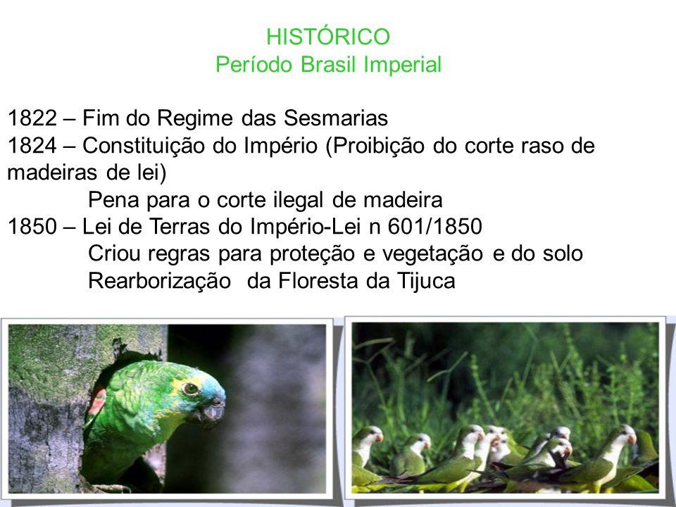 HISTÓRICO Período Pré-Colonial e Colonial 1500/1530 – Exploração do Pau-Brasil e Tráfico de Animais Silvestres 1530 – Capitanias Hereditárias e Sesmar