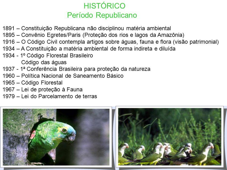 HISTÓRICO Período Brasil Imperial 1822 – Fim do Regime das Sesmarias 1824 – Constituição do Império (Proibição do corte raso de madeiras de lei) Pena