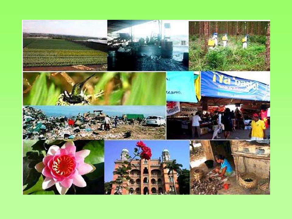 A CETESB – órgão ambiental estadual- contabilizou 1.596 áreas contaminadas, número bem maior que as 157 áreas levantadas pelo programa VIGISOLO do Ministério da Saúde para o mesmo estado.