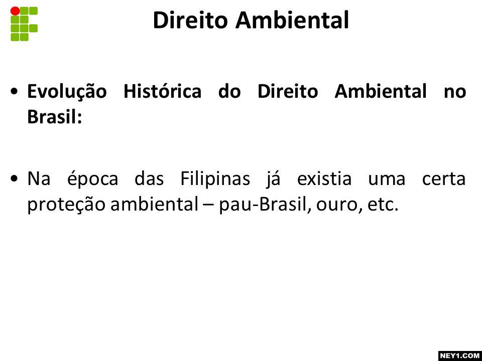Direito Ambiental Evolução Histórica do Direito Ambiental no Brasil: Na época das Filipinas já existia uma certa proteção ambiental – pau-Brasil, ouro, etc.