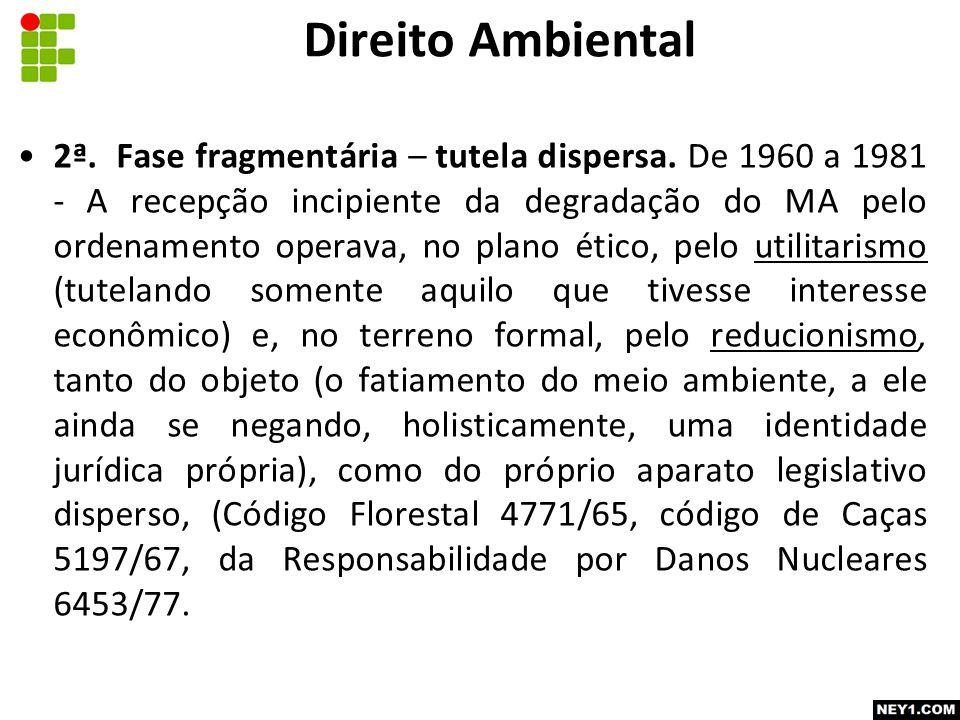 2ª.Fase fragmentária – tutela dispersa.