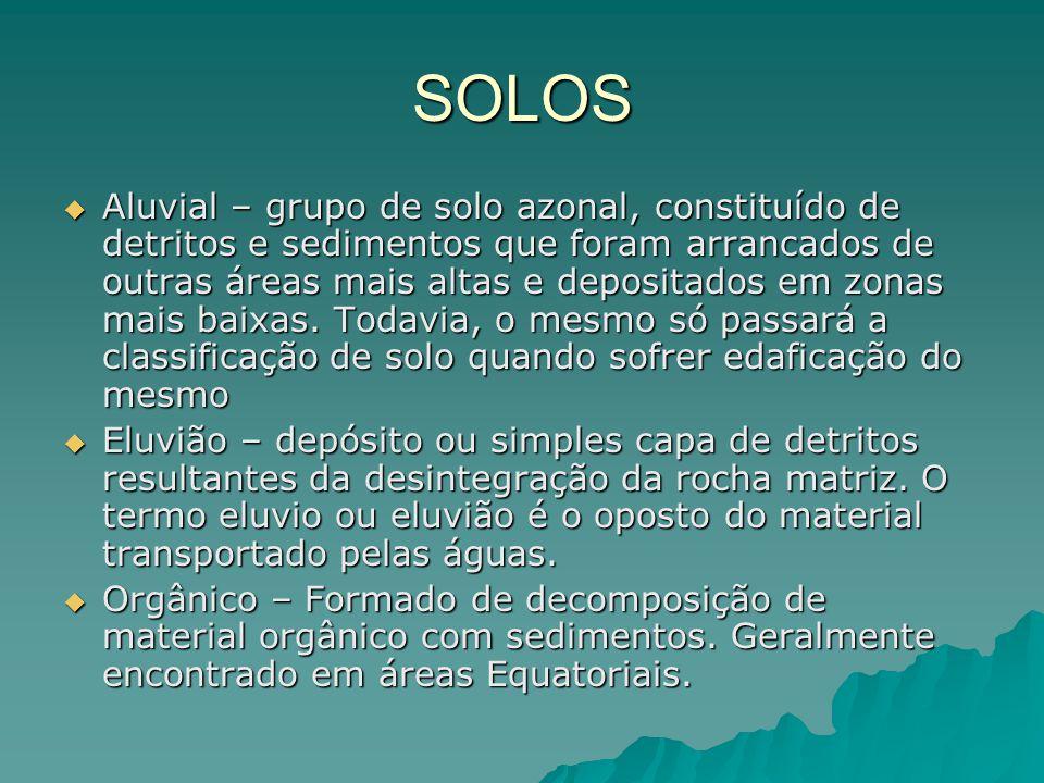 SOLOS AAAAluvial – grupo de solo azonal, constituído de detritos e sedimentos que foram arrancados de outras áreas mais altas e depositados em zon