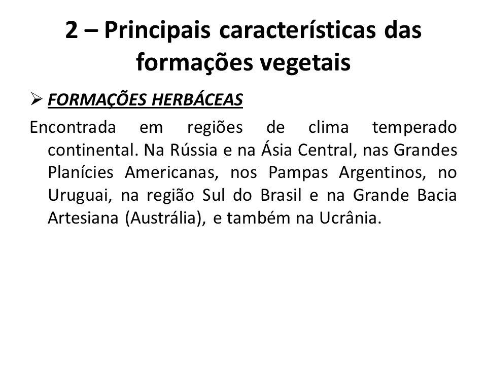  FORMAÇÕES HERBÁCEAS Encontrada em regiões de clima temperado continental. Na Rússia e na Ásia Central, nas Grandes Planícies Americanas, nos Pampas