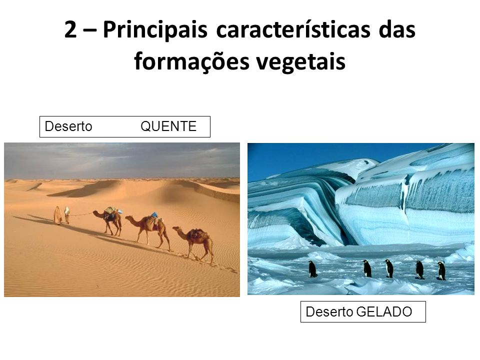 Deserto QUENTE Deserto GELADO