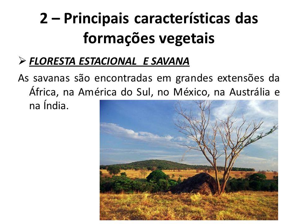  FLORESTA ESTACIONAL E SAVANA As savanas são encontradas em grandes extensões da África, na América do Sul, no México, na Austrália e na Índia. 2 – P