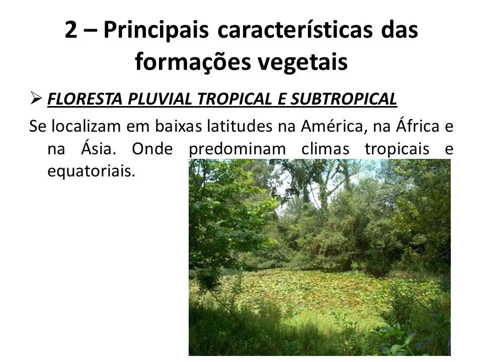  FLORESTA PLUVIAL TROPICAL E SUBTROPICAL Se localizam em baixas latitudes na América, na África e na Ásia. Onde predominam climas tropicais e equator