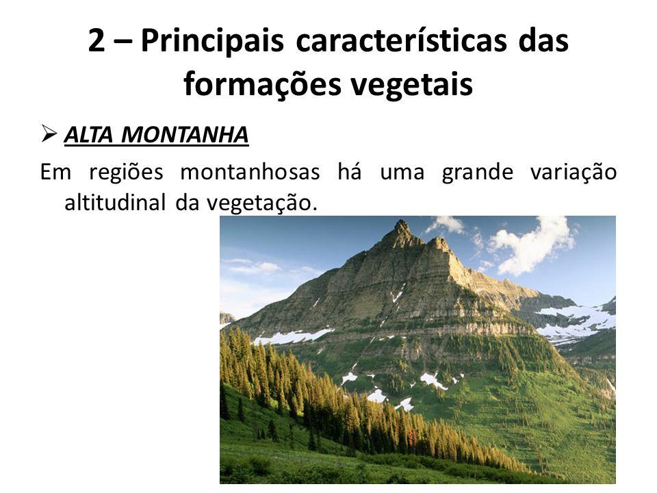  ALTA MONTANHA Em regiões montanhosas há uma grande variação altitudinal da vegetação. 2 – Principais características das formações vegetais