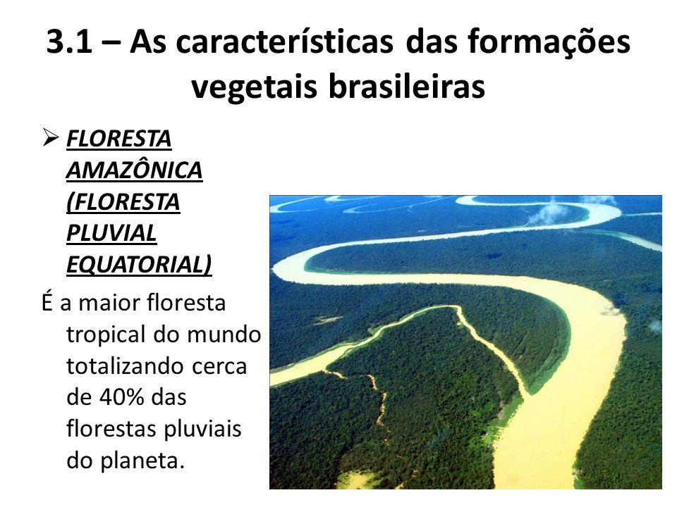 3.1 – As características das formações vegetais brasileiras  FLORESTA AMAZÔNICA (FLORESTA PLUVIAL EQUATORIAL) É a maior floresta tropical do mundo to
