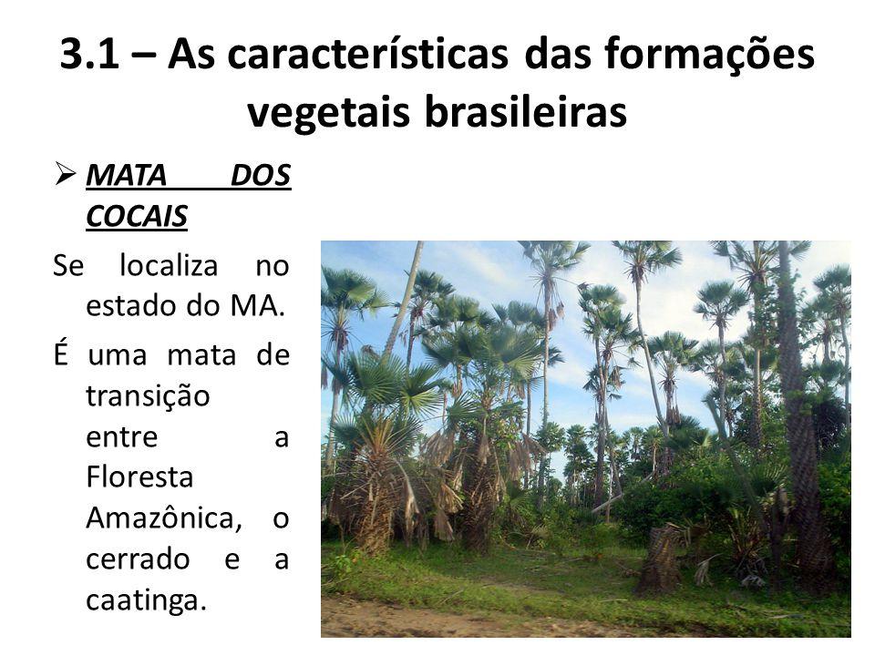  MATA DOS COCAIS Se localiza no estado do MA. É uma mata de transição entre a Floresta Amazônica, o cerrado e a caatinga. 3.1 – As características da