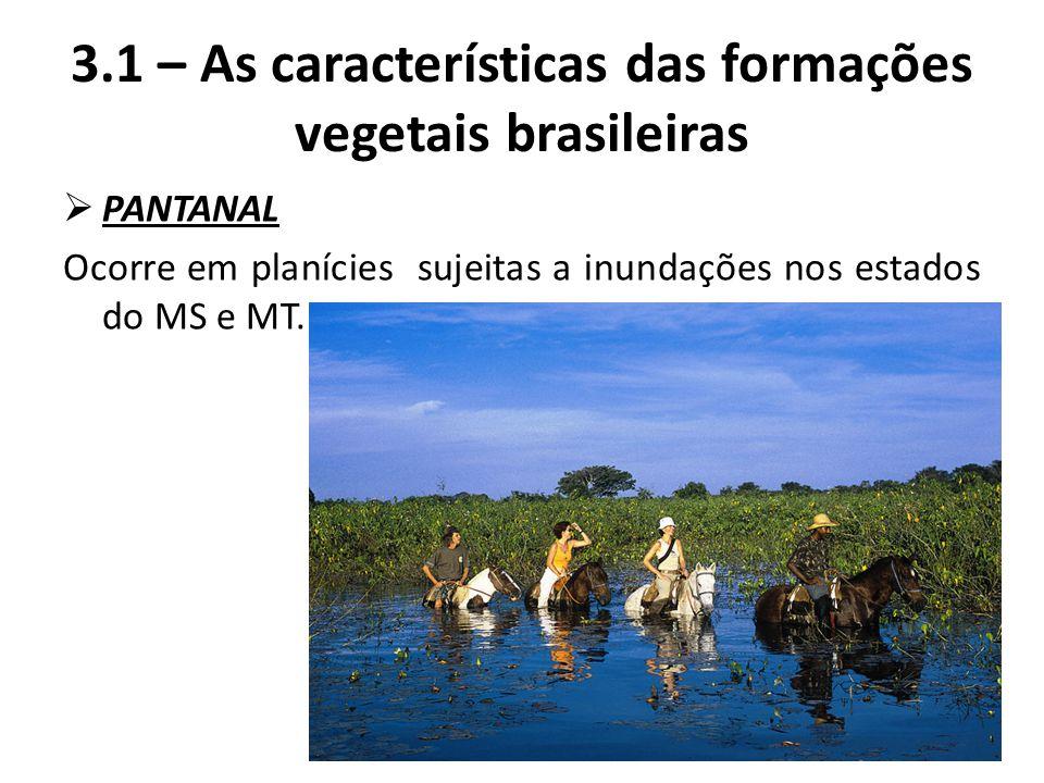  PANTANAL Ocorre em planícies sujeitas a inundações nos estados do MS e MT. 3.1 – As características das formações vegetais brasileiras