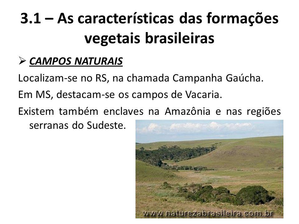  CAMPOS NATURAIS Localizam-se no RS, na chamada Campanha Gaúcha. Em MS, destacam-se os campos de Vacaria. Existem também enclaves na Amazônia e nas r