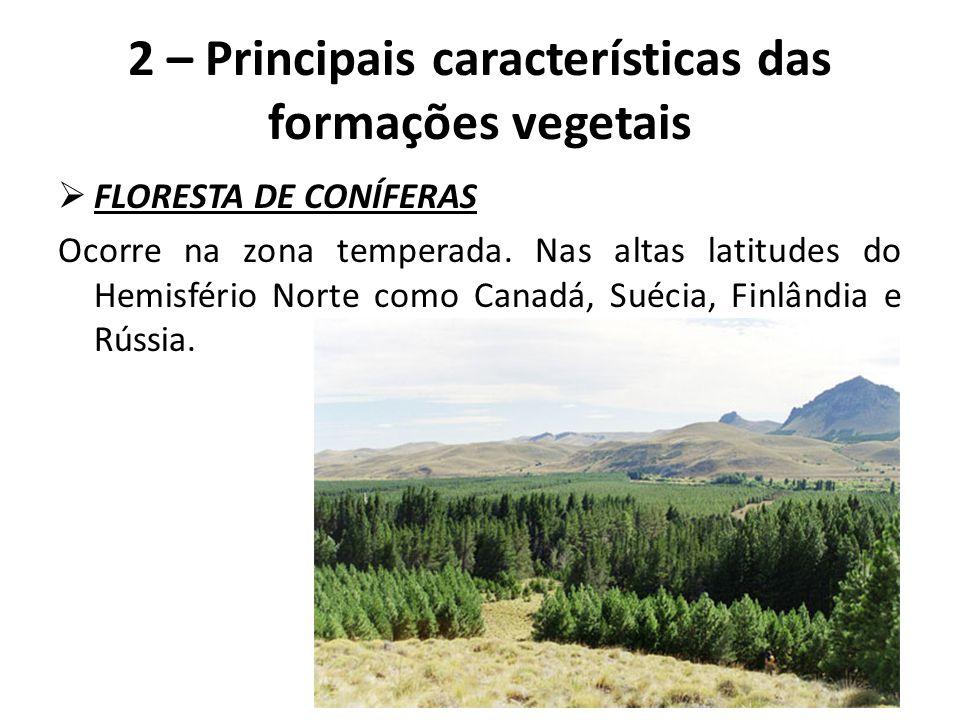  FLORESTA TEMPERADA Encontrada em latitudes mais baixas e sob maior influência da maritimidade, o que permite a instalação de atividades agropecuárias.