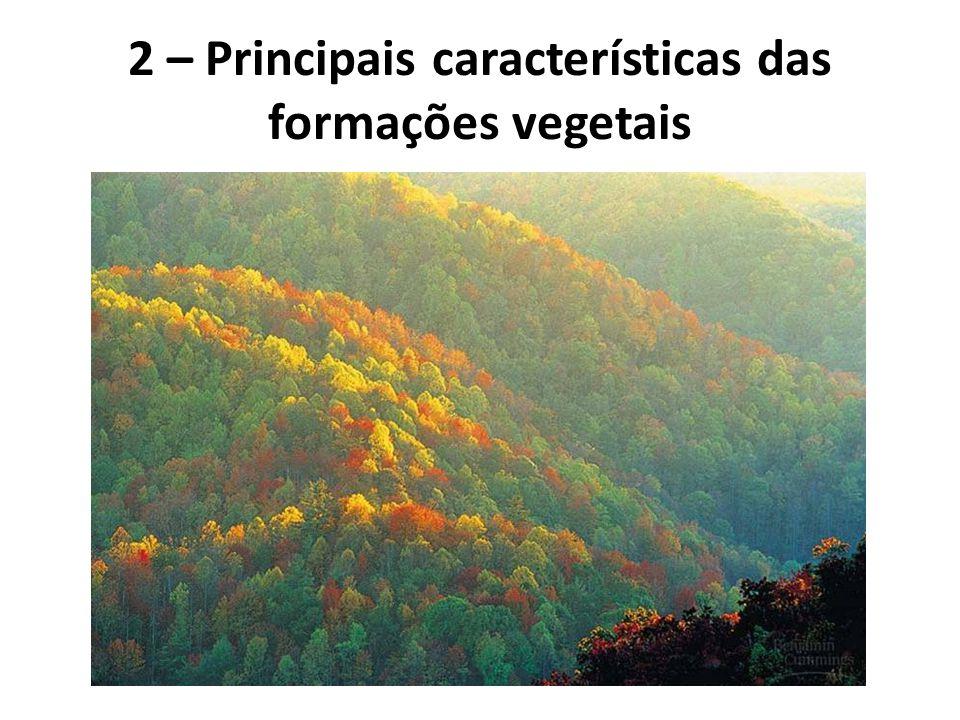  ALTA MONTANHA Em regiões montanhosas há uma grande variação altitudinal da vegetação.