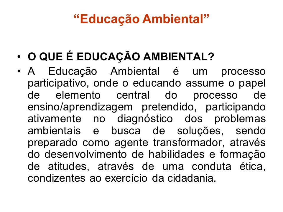 """""""Educação Ambiental"""" O QUE É EDUCAÇÃO AMBIENTAL? A Educação Ambiental é um processo participativo, onde o educando assume o papel de elemento central"""
